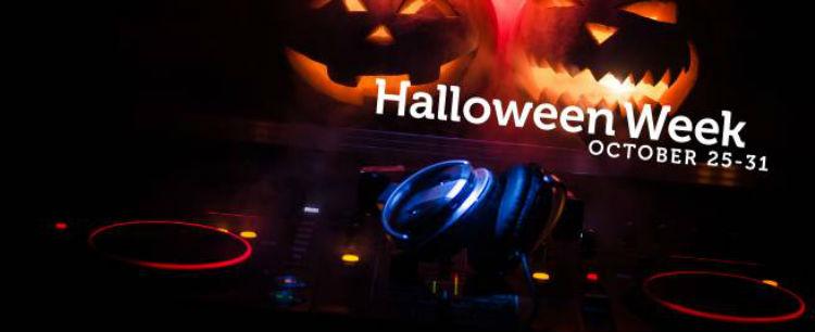 Wintika Casino Halloween Free Spins ohne Einzahlung
