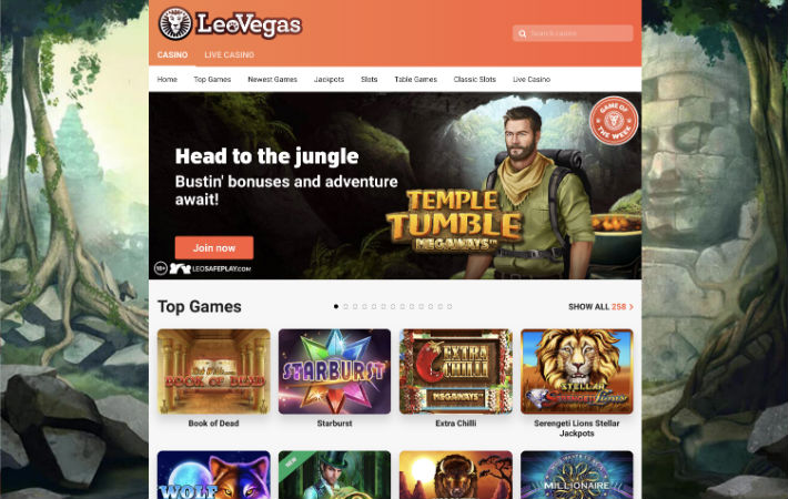 LeoVegas Casino Book of Dead Slot Bonus